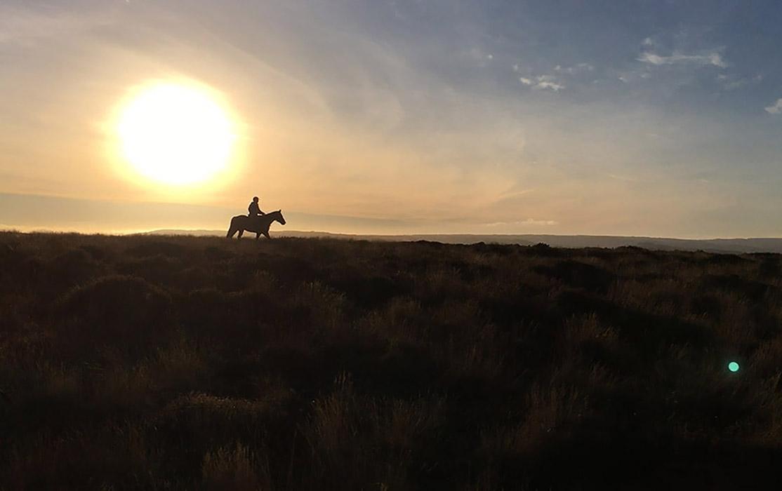 Horse-riding-in-Quantock-hills 2